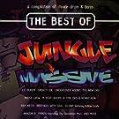 Best of Jungle Massive