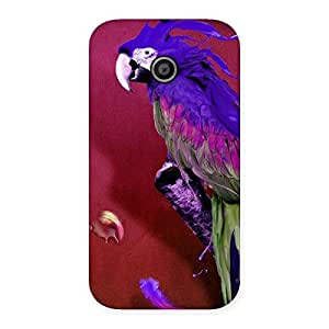 Delighted Magic Parrot Multicolor Back Case Cover for Moto E