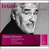 Schmidt (Brigitte Edition Männer 02) | Louis Begley