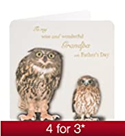Wise Owl Grandpa Fathers Day Card