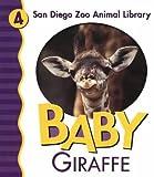 Baby Giraffe (San Diego Zoo Animal Library)
