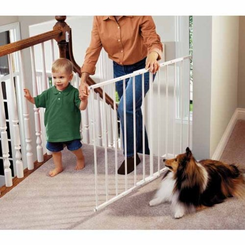 safeway-wall-mounted-black-2475-435-x-305
