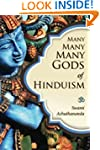 Many Many Many Gods of Hinduism: Turn...