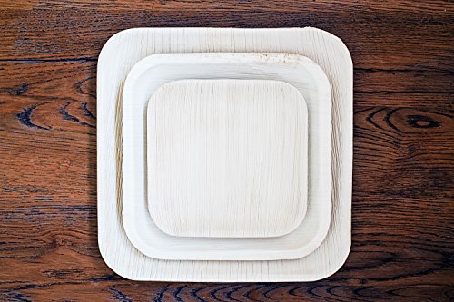 Previous · / Next & Premium Palm Leaf Plates by Ecoism - Only Selective Fallen Areca ...