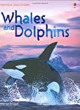 Whales and Dolphins (Usborne Discovery)