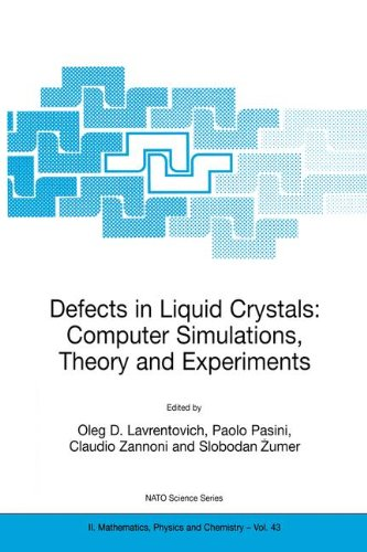 defects-in-liquid-crystals-computer-simulations-theory-and-experiments-nato-science-series-ii