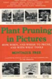 Plant Pruning in Pictures; How, When, and Where to Prune, and with what Tools