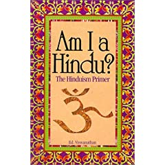 Am I a Hindu? book cover