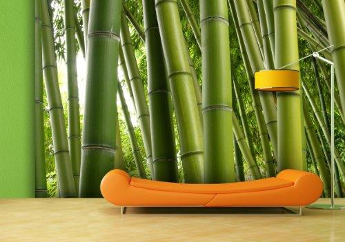 fototapete bamboo collection in verschiedenen gr en als papiertapete oder vliestapete w hlbar. Black Bedroom Furniture Sets. Home Design Ideas
