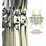 Lost in Meditation: Meditative Gregorian Chants, Vol. 2