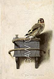 The Goldfinch, 1654 by Carel Fabritius, Art Print Poster 11\