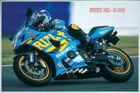 Posters: Motorcycles Poster - Suzuki, GSX-R1000 (36 x 24 inches)