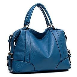 Hynes Victory Womens Luxury Hobo Handbag (Blue)