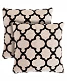 Pegasus Home Fashions Chantilly Decorative Pillows (2 Pack)