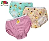 Dora Fruit of the Loom Little Girls' 3-pack brief underwear (sizes 2T - 8)