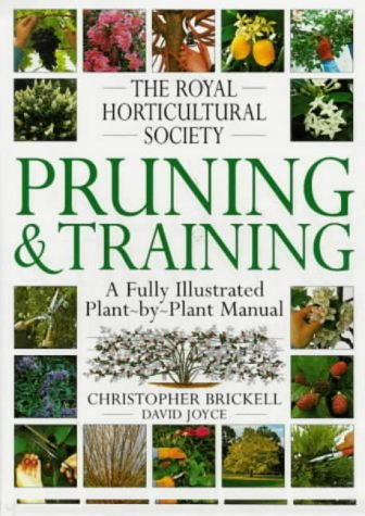 PRUNING TRAINING (RHS)
