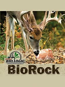 BioLogic Bio Rock Feeder, 10-Pound