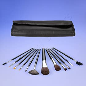 Coastal Scents 13 Piece Brush Set