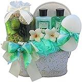 Art of Appreciation Gift Baskets Jasmine Renewal Spa Bath and Body Gift Set, Medium