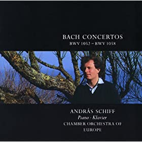 J.S. Bach: Concerto for Harpsichord, Strings, and Continuo No.1 in D minor, BWV 1052 - piano performance - 3. Allegro
