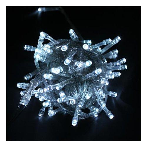 Ledspring 100 Led Light String Christmas Party Fairy Light(White)