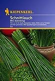 Kiepenkerl 910121 Schnittlauch Miro Mehrjährig