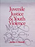 Juvenile Justice and Youth Violence