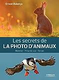 Les secrets de la photo d'animaux: Mat�riel - Prise de vue - Terrain