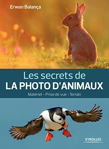Les secrets de la photo d'animaux: Matériel - Prise de vue - Terrain