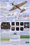 (24x36) Principles of Flight Aerodynamic Educational Science Chart Poster