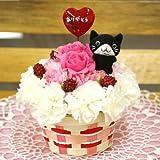 黒ネコさんとありがとうピック付きカーネーションと季節のお花のケーキアレンジメント(生花)FL-MD-102