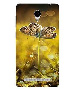 PrintVisa Butterfly Design 3D Hard Polycarbonate Designer Back Case Cover for VivoY28