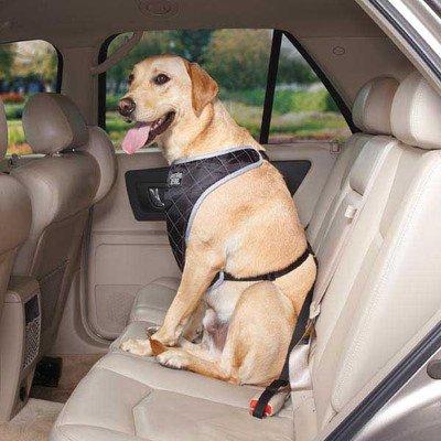 Gg Fairfield Car Pet Harness, Small/Medium, Black