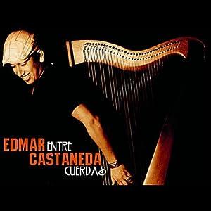Edmar Castaneda Im Konzert
