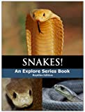 Interesting facts about the most poisonous snakes in the world, with color photos for each snake.
