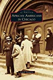 img - for African Americans in Chicago book / textbook / text book