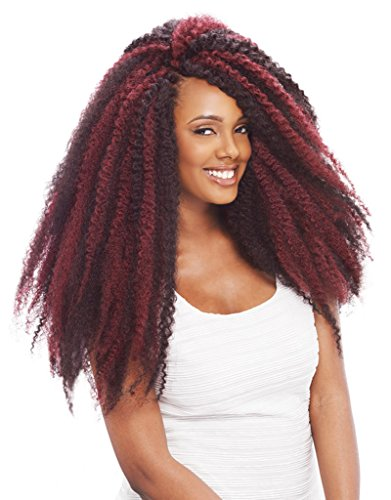 Janet Collection Afro Twist Braid Crochet Hair with Crochet Hook ...