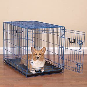 Colorful Wire Dog Crate by Crate Appeal