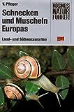 Image de Schnecken und Muscheln Europas. Land- und Süßwasserarten