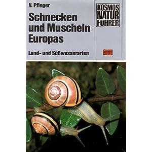 Schnecken und Muscheln Europas. Land- und Süßwasserarten