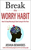 img - for Break The Worry Habit: How To Stop Worrying And Start Living In The Flow book / textbook / text book