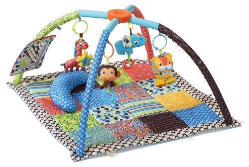 Lowest Price! Infantino Twist and Fold Activity Gym, Vintage Boy