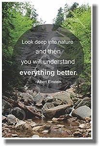 Albert Einstein Look Deep into Nature Quote