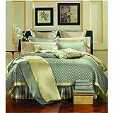Park Avenue Spa Blue 8 Piece Super Bed In a Bag Comforter Set, Queen