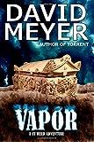 Vapor (Cy Reed Adventure) (Volume 4)