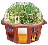 Dunecraft Beer Garden Domed Terrarium
