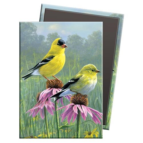 Tree-Free Greetings Goldfinch and Coneflowers Premium Magnet, 2.5 x 3.5-Inches, Multi Color (73027)