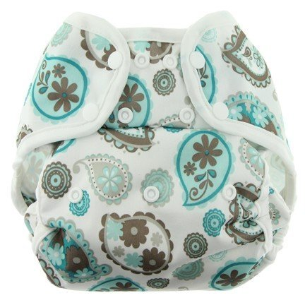 Blueberry One Size Simplex All In One Diaper w/ Organic Cotton (Paisley)
