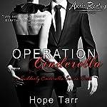 Operation Cinderella: A Suddenly Cinderella Series Book (Entangles Indulgence) | Hope Tarr