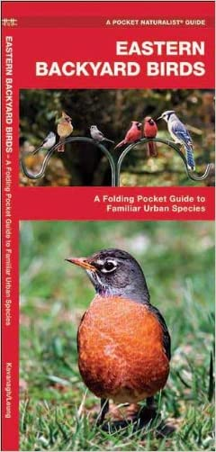 Eastern Backyard Birds: A Folding Pocket Guide to Familiar Urban Species (Pocket Naturalist Guide Series)